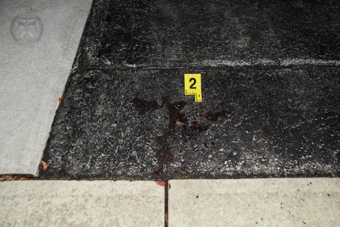 Photographs of the scene were taken by a TPS scenes of crime officer (SOCO). In the photographs was a small pool of dried blood on the driveway of a second residence on Annabelle Drive, consistent with the location where the Complainant was arrested.