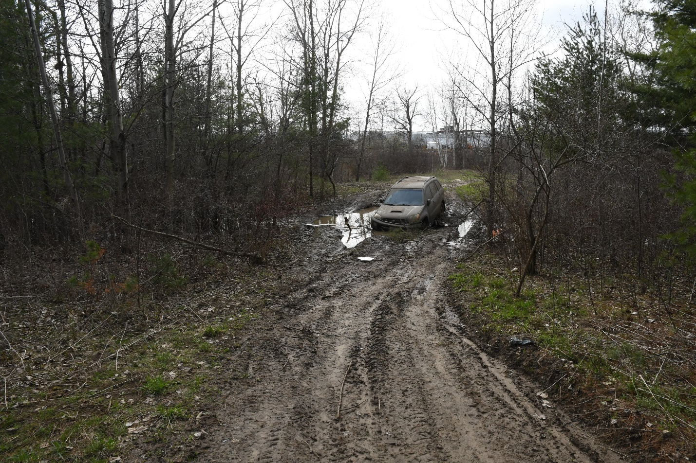 Figure 1 - The wooded area where a black Toyota RAV4 was found partially submerged in the mud.